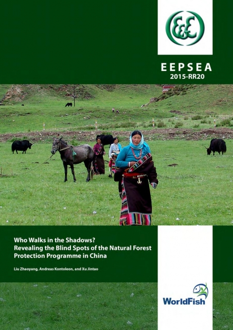 Who Walks in the Shadows? Revealing the Blind Spots of the Natural Forest Protection Programme in China