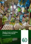 Weather Events and Welfare in Philippine Households